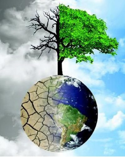 surreal graphic of the earth with a tree coming out the top, dead on one side, green on the other