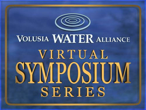 Virtual Symposium Series logo
